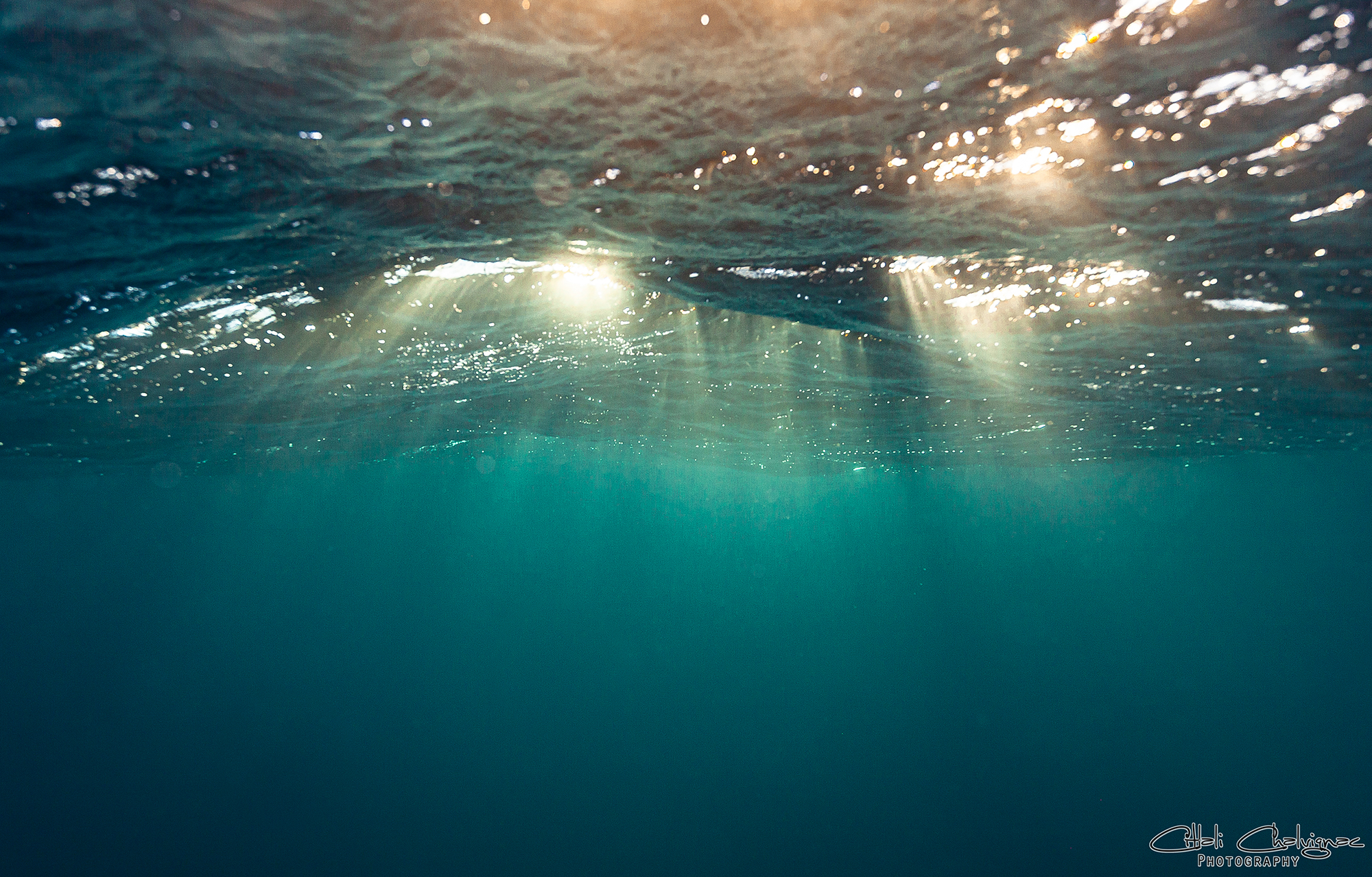 Galeria Ocean imagen 1 Citlali Chalvignac