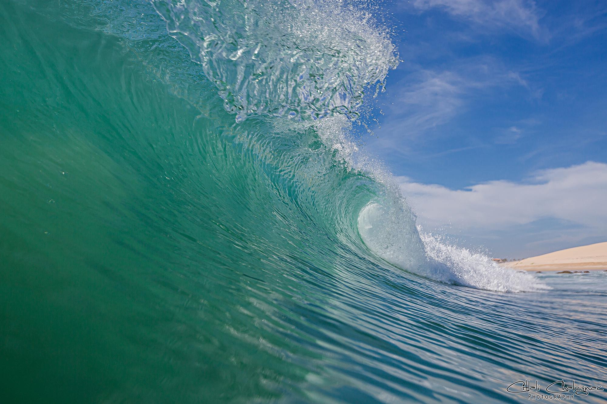 Galeria Ocean imagen 6 Citlali Chalvignac