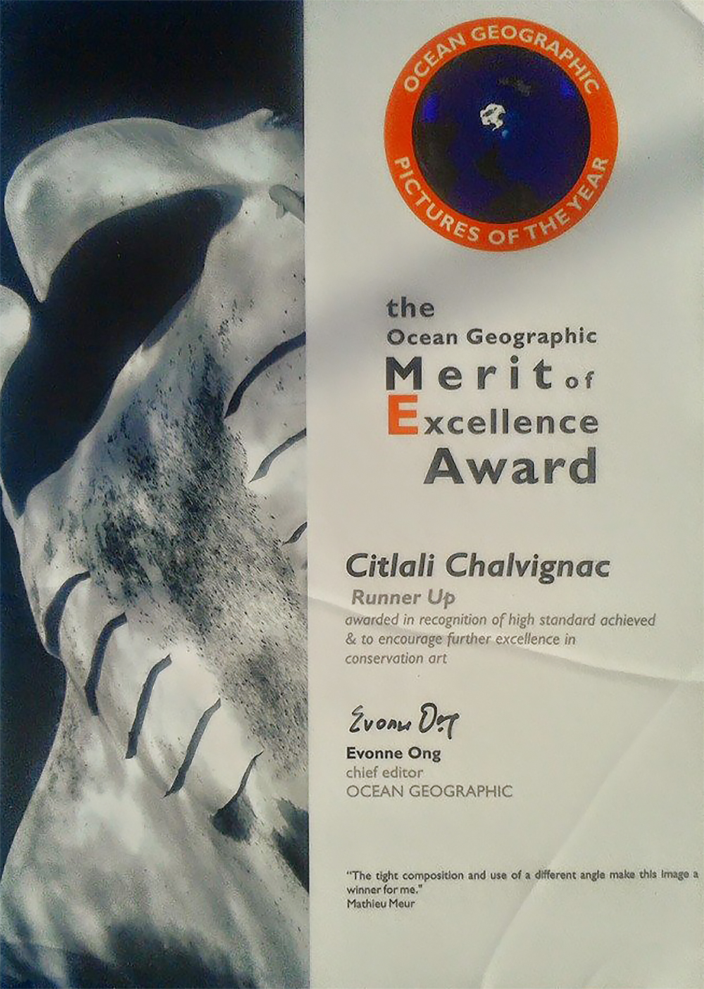The Ocean Geographic Merit of Excellence Award Citlali Chalvignac